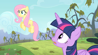 Twilight telling Fluttershy to stop staring S4E07