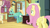 Zephyr Breeze appears at Fluttershy's door S6E11