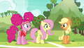 """Applejack """"you two get the idea?"""" S6E18.png"""