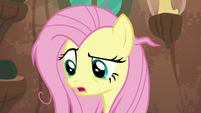 "Fluttershy ""I'm the only pony you can talk to"" S9E18"