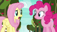 "Fluttershy ""never even heard of buckball"" S6E18"