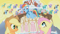 "Fluttershy to Rainbow Dash ""Stop!"" S1E11.png"