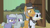 Pinkie Pie family hesitate2 S01E23