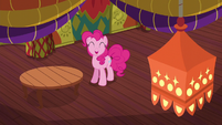 Pinkie Pie pleased with the redecorating S6E12