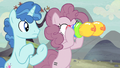 Pinkie borrows Party Favor's binoculars S5E2.png
