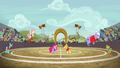 Ponyville beats Appleloosa in buckball S6E18.png