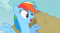Rainbow Dash gasp realization S2E8