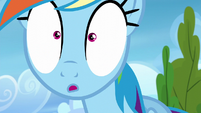 Rainbow Dash in wide-eyed surprise S6E7