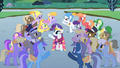 Rarity ends her solo S1E26.png