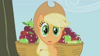 S01E04 Applejack zaskoczona nie zebranymi jabłkami
