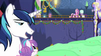 "Shining Armor ""your mom sure is something"" MLPBGE"