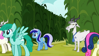 The ponies head for the seminar S2E19