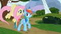 Angel on Fluttershy's tail S2E07.png