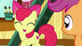"Apple Bloom ""my favorite thing to do"" S7E6.png"