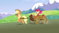 Applejack pulling Apple Bloom in a cart S3E3