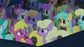 Audience ponies in mild confusion S5E24.png