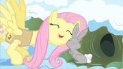 Fluttershy-Pony