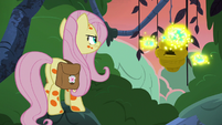 Fluttershy confronting the flash bees again S7E20