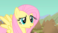 Fluttershy has a questioning look S1E19.png