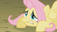 Fluttershy is not so ready S01E07