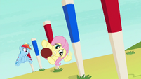 Fluttershy swerving through obstacle pegs S6E18