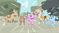 Goats and cows living happily ever after S7E11.png