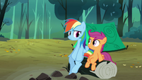 Rainbow Dash and Scootaloo sitting on log S3E6