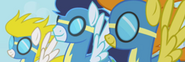 The Wonderbolts mugshot