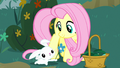 Angel giving a flower to Fluttershy S8E18.png