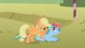 Applejack and Rainbow Dash 2 S01E13.png