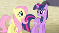 """Fluttershy """"the map is calling us somewhere else"""" S5E02.png"""