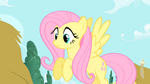 Fluttershy to Twilight 'The Everfree Forest ' S1E17