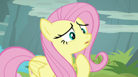Fluttershy worried about Rarity S8E4