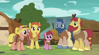 Group of island villager ponies S7E16