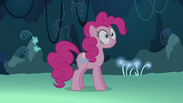 Pinkie Pie tells herself to stop talking to herself S3E3