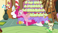 Pinkie dizzy S5E19.png