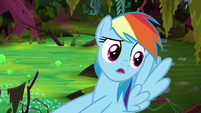 "Rainbow Dash ""I found a bigger clue!"" S8E17"