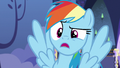 "Rainbow Dash ""you've gotta be kidding me!"" S6E24.png"