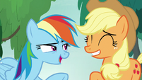 Rainbow Dash -you are so right!- S8E9