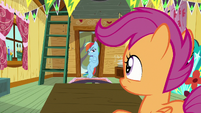 Rainbow Dash at the clubhouse entrance S8E20
