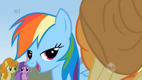 Rainbow Dash says yeah yeah S1E13