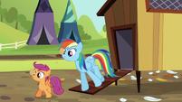 Rainbow and Scootaloo balancing eggs S5E17