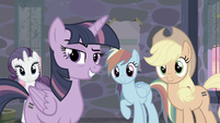 Rarity, Twilight, RD, and AJ smiling at Fluttershy S5E02