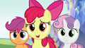 "Apple Bloom ""how'd the test go?"" S8E12.png"