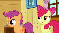 Apple Bloom --Maybe...-- S6E4