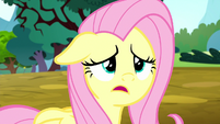 "Fluttershy ""we didn't even get a chance"" S8E18"