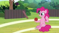 Pinkie Pie holding a buckball S9E15