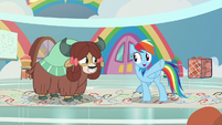 "Rainbow Dash ""just get with the flow"" S9E7"