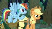 Rainbow Dash -some kind of curse- S8E13