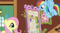 Rainbow Dash suggests a bird flying course S7E5